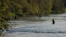 rybaření na Ohři.jpg