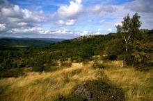 doupov-opustena-krajina-a-krusne.jpg